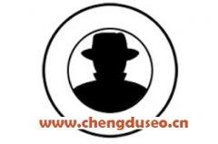 南充seo优化网站排名