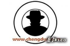 广安seo网站优化